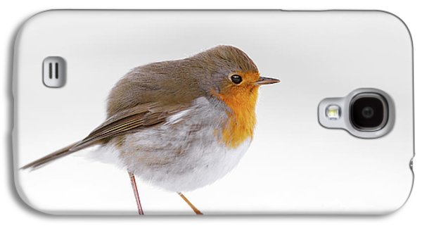 Red Robin In The White Snow Galaxy S4 Case