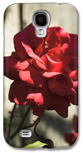 Galaxy S4 Case featuring the photograph Red Rose by Yulia Kazansky