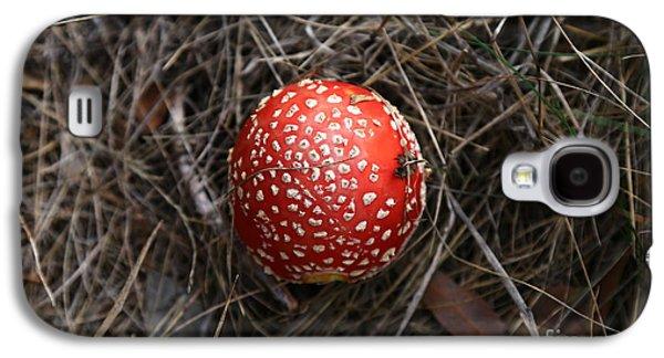 Red Spotty Toadstool Galaxy S4 Case by Nareeta Martin