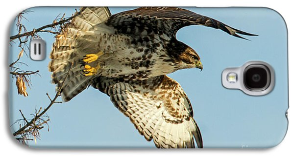 Red-tail  Takeoff Galaxy S4 Case by Mike Dawson