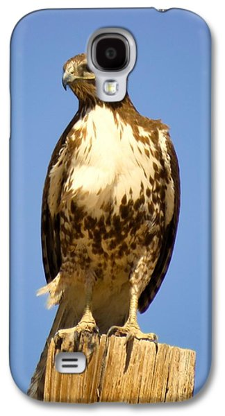 Red-tailed Hawk On Post Galaxy S4 Case