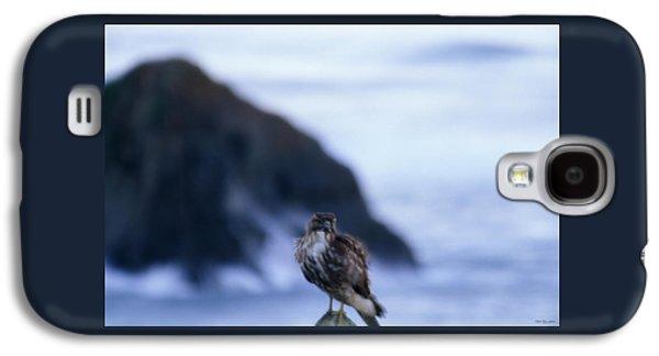 Red-tailed Hawk - Westport Union Landing State Beach Galaxy S4 Case