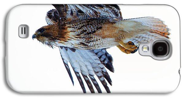 Red-tailed Hawk Winter Flight Galaxy S4 Case by Mike Dawson