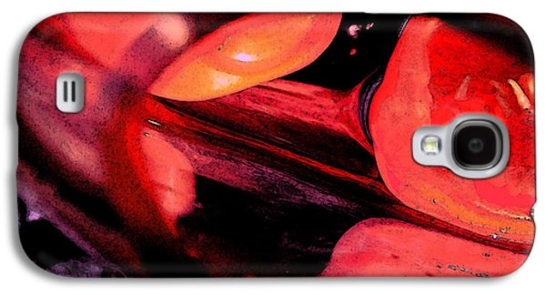 Red Tomatoe Two Galaxy S4 Case