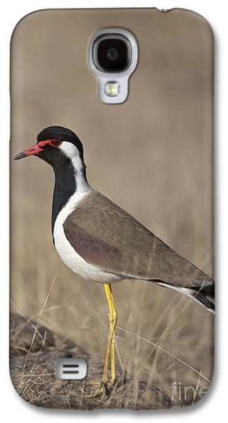 Red-wattled Lapwing Galaxy S4 Case