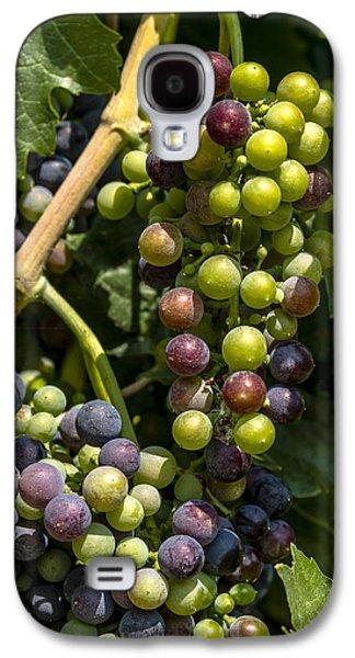 Red Wine Grape Colors In The Sun Galaxy S4 Case