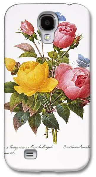 1833 Galaxy S4 Cases - Redoute: Roses, 1833 Galaxy S4 Case by Granger