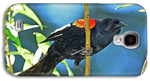 Redwing Blackbird Galaxy S4 Case