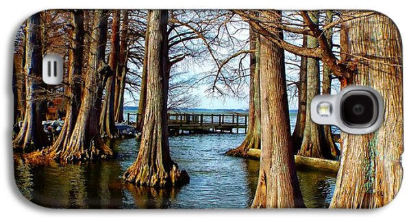 Reelfoot In Winter II Galaxy S4 Case by Julie Dant