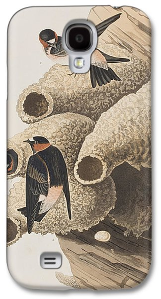 Republican Or Cliff Swallow Galaxy S4 Case by John James Audubon
