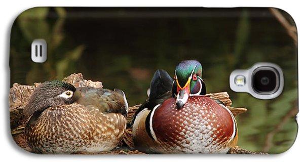 Resting Wood Ducks Galaxy S4 Case