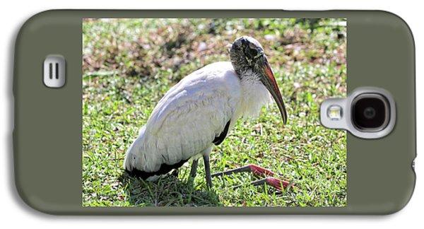 Resting Wood Stork Galaxy S4 Case by Carol Groenen