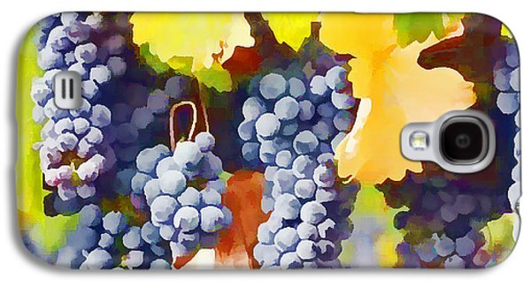 Ripe Wine Grapes Ready For Harvest Galaxy S4 Case