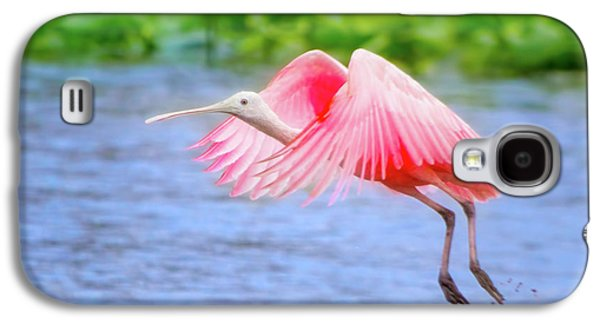 Rise Of The Spoonbill Galaxy S4 Case by Mark Andrew Thomas