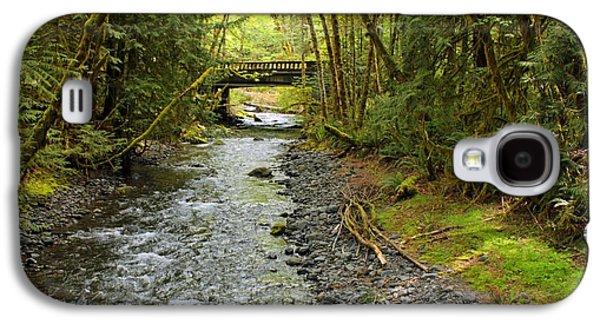 Landscapes Photographs Galaxy S4 Cases - River through the Rainforest Galaxy S4 Case by Carol Groenen