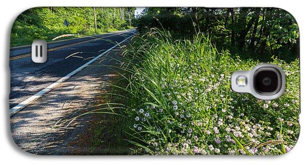 Roadside Wildflowers Galaxy S4 Case by Laurie Breton