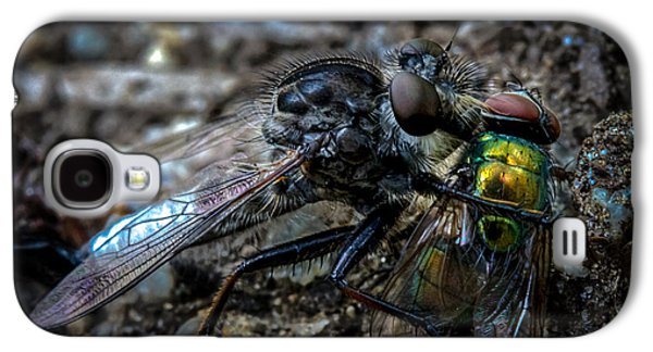 Robber Fly Eating Green Bottle Fly Galaxy S4 Case