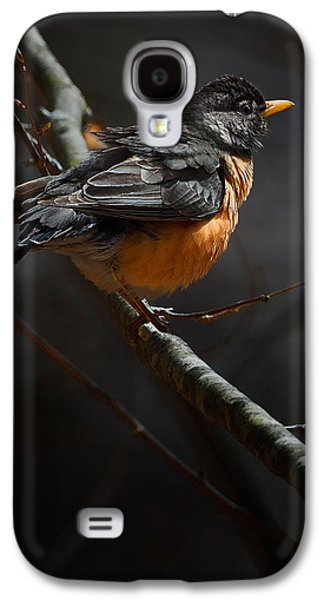 Robin In The Light Galaxy S4 Case