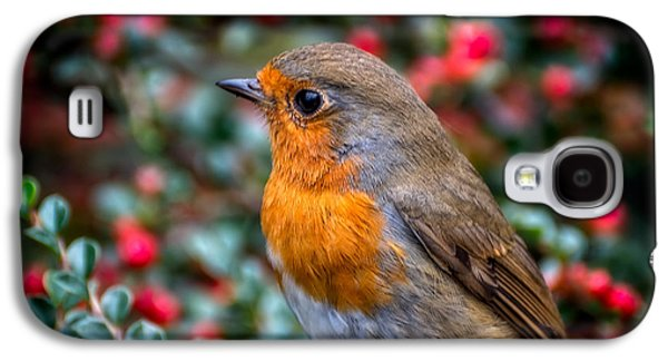 Robin Redbreast Galaxy S4 Case