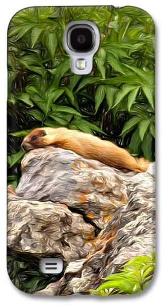 Rock Chuck Galaxy S4 Case by Lana Trussell