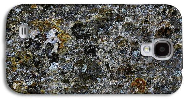 Rock Lichen Surface Galaxy S4 Case