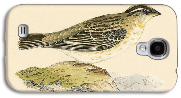 Rock Sparrow Galaxy S4 Case by English School