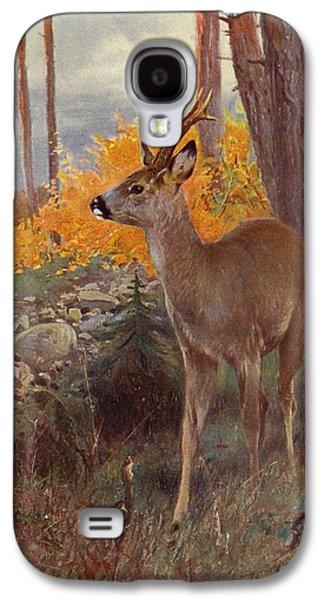 Roe Deer Galaxy S4 Case
