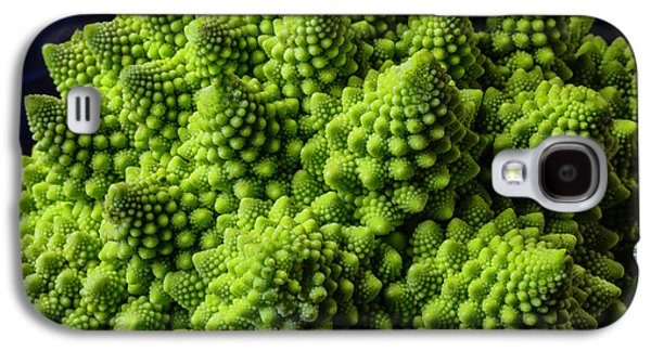 Broccoli Galaxy S4 Case - Romanesco Broccoli by Garry Gay