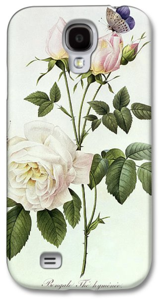 Rosa Bengale The Hymenes Galaxy S4 Case by Pierre Joseph Redoute
