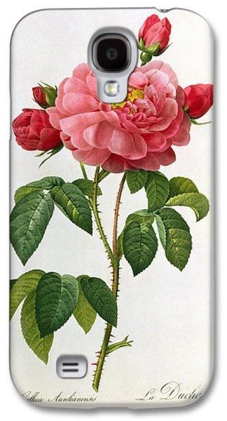 Rosa Gallica Aurelianensis Galaxy S4 Case by Pierre Joseph Redoute
