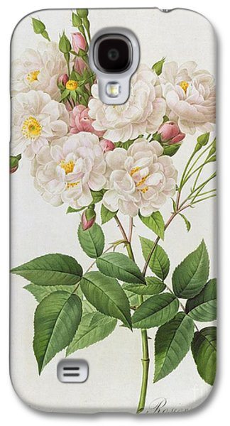 19th Galaxy S4 Cases - Rosa Noisettiana Galaxy S4 Case by Pierre Joseph Redoute