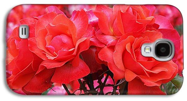 Rose Abundance Galaxy S4 Case by Rona Black
