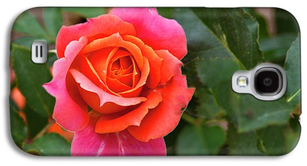 Galaxy S4 Case featuring the photograph Rose by Bill Barber