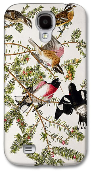Rose Breasted Grosbeak Galaxy S4 Case