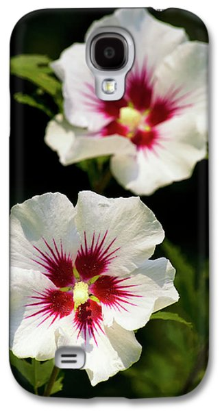 Galaxy S4 Case featuring the photograph Rose Of Sharon by Christina Rollo