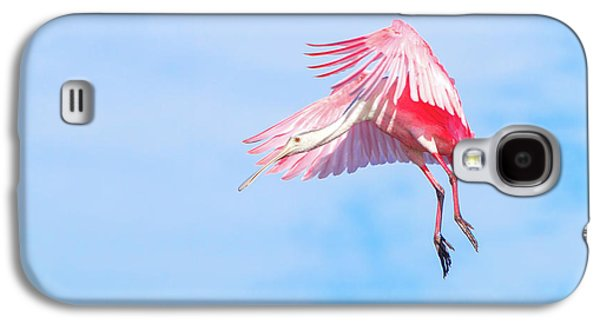 Roseate Spoonbill Final Approach Galaxy S4 Case by Mark Andrew Thomas