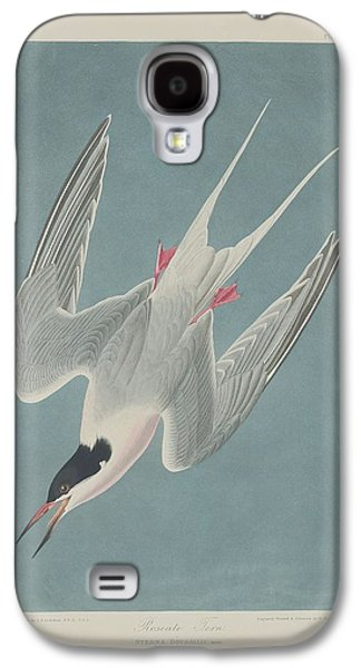 Roseate Tern Galaxy S4 Case by Rob Dreyer