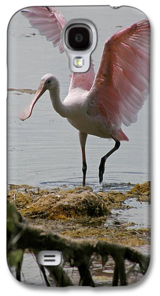 Spoonbill Galaxy S4 Case - Roseate Wave by Kimberly Mohlenhoff