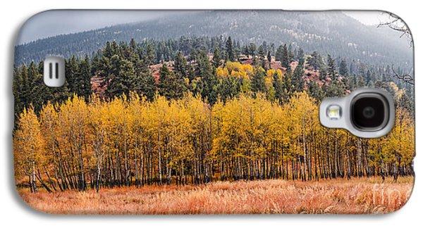 Row Of Aspens In The Fall River Valley - Fall Foliage In Estes Park Colorado Galaxy S4 Case