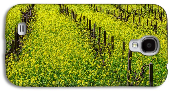 Rows Of Mustard Grass Galaxy S4 Case by Garry Gay
