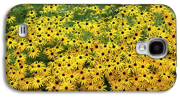Rudbeckia Fulgida Deamii Flowers Galaxy S4 Case by Tim Gainey