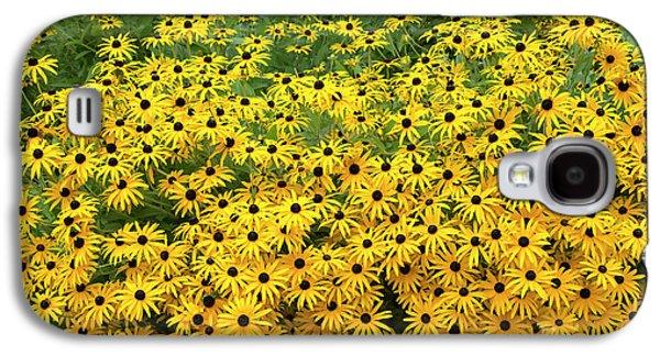 Rudbeckia Fulgida Deamii Flowers Galaxy S4 Case