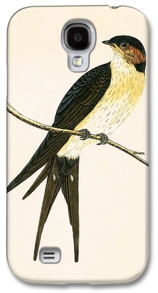 Rufous Swallow Galaxy S4 Case