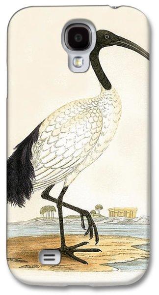 Sacred Ibis Galaxy S4 Case by English School