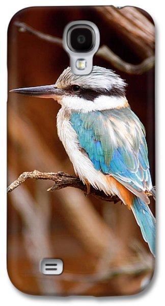 Kingfisher Galaxy S4 Case - Sacred Kingfisher by Mike  Dawson