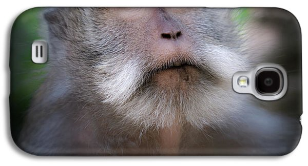Sacred Monkey Forest Sanctuary Galaxy S4 Case by Larry Marshall