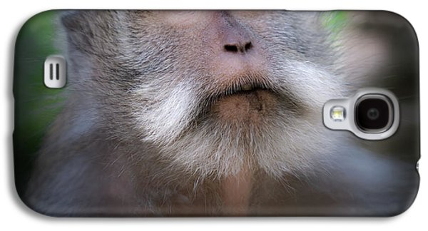 Helicopter Galaxy S4 Case - Sacred Monkey Forest Sanctuary by Larry Marshall