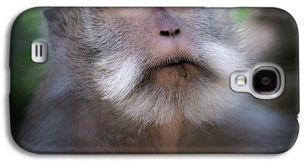Dragon Galaxy S4 Case - Sacred Monkey Forest Sanctuary by Larry Marshall