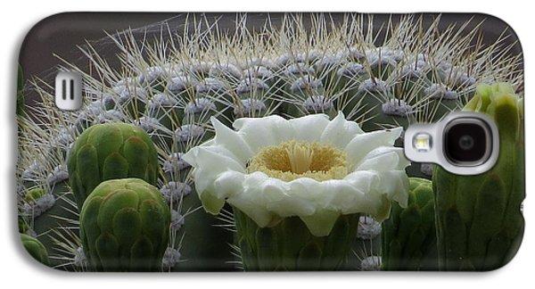 Saguaro Crown Galaxy S4 Case by Feva  Fotos
