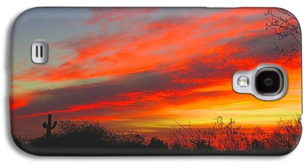 Saguaro Winter Sunrise Galaxy S4 Case